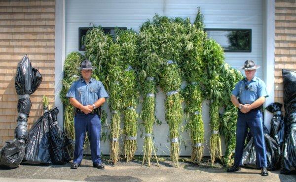 Nevada lawmakers consider crackdown on black market marijuana sales